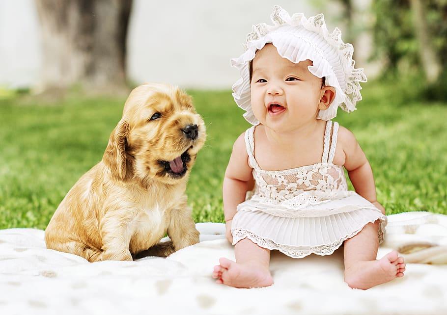 Beneficios de tener perro en niños