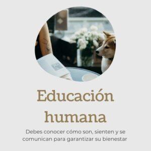 Educación humana