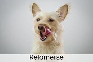 Relamerse